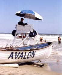 Avalon Babysitting, babysitting service, life guards, New jersey, Babysitters
